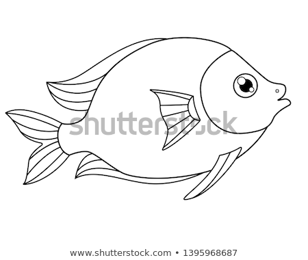 Animal outline for fish Stock photo © colematt