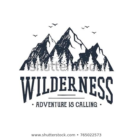 キャンプ 冒険 カード 山 エクスプローラ ストックフォト © JeksonGraphics