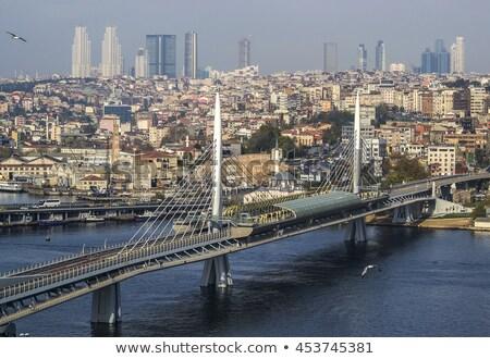 mecset · Isztambul · városkép · domb · Törökország · épület - stock fotó © artjazz