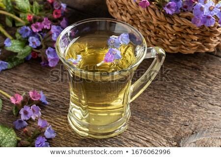 fraîches · fleurs · table · blanche · fleur · vert - photo stock © madeleine_steinbach