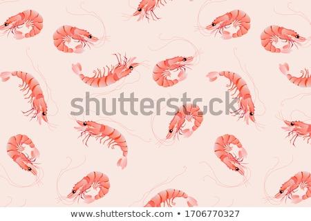 Shrimp seamless pattern.  Stock photo © netkov1