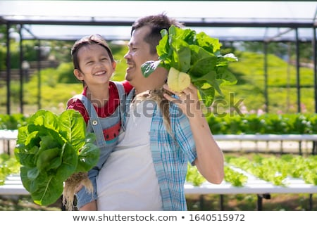 farmers working together farming people harvest stock photo © robuart