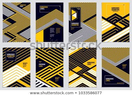 аннотация диагональ линия геометрическим рисунком дизайна Баннеры Сток-фото © SArts