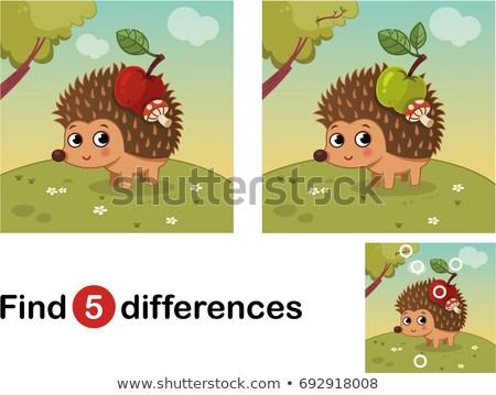 Különbségek játék sündisznó állat betűk rajz Stock fotó © izakowski