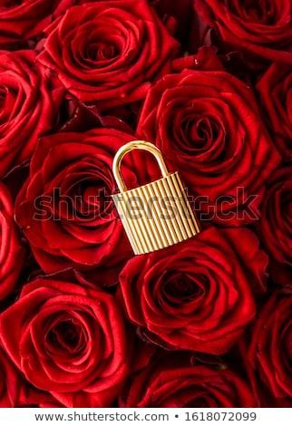 miłości · złoty · romans · blokady · kształt · serca · most - zdjęcia stock © anneleven