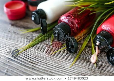 Trzy zielone szampon butelki choinka Zdjęcia stock © RuslanOmega