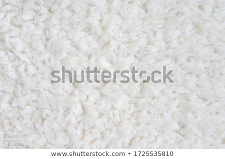 Woolen texture Stock photo © leeser