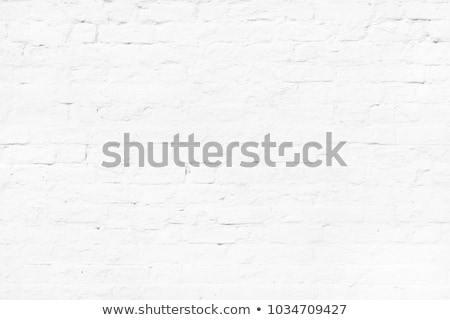 Shrub and wall background Stock photo © dutourdumonde