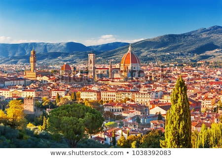 Florence, view of Palazzo Vecchio from Piazzale Michelangelo stock photo © wjarek