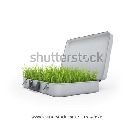 зеленый · чемодан · закрыто · белый · отпуск - Сток-фото © massonforstock