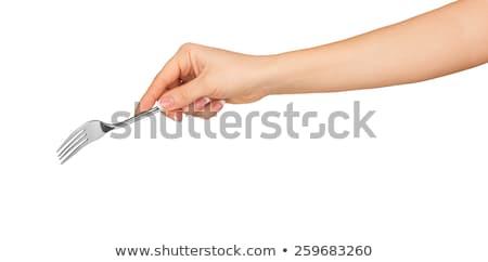 villa · kéz · izolált · fehér · szolgáltatás · acél - stock fotó © Taigi