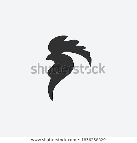 Head of a Rooster Stock photo © rhamm