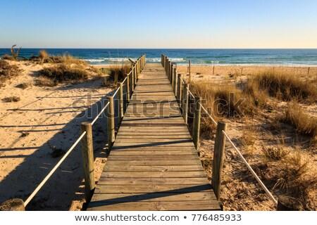 Stock photo: Wooden walk way