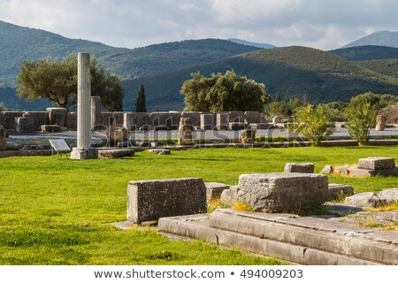 археологический · Греция · руин · дерево · строительство - Сток-фото © ankarb