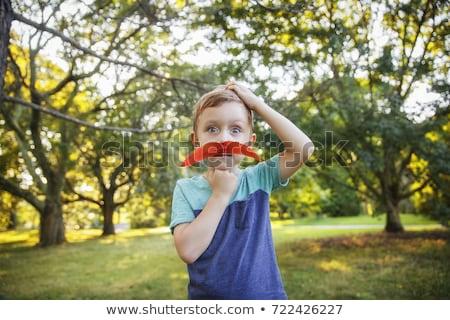 かわいい 少年 困惑して ブロンド 立って ストックフォト © d13