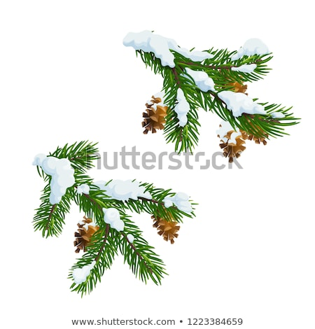 Leaf on the twig covered with snow. Stock photo © rglinsky77