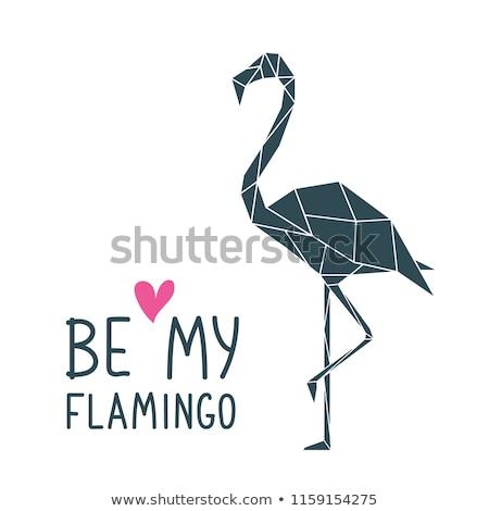 実例 抽象的な フラミンゴ 折り紙 スタイル 白 ストックフォト © gladiolus