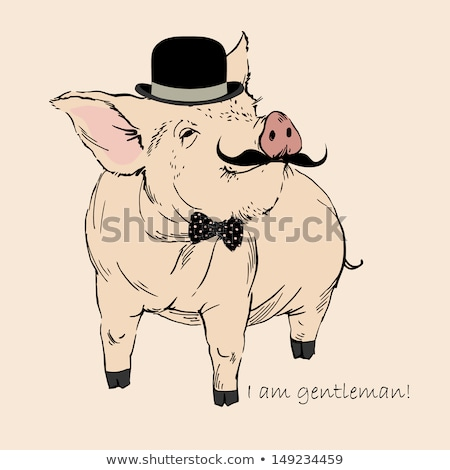 Sketch pig in hat with mustche, vector  ackground Stock photo © kali