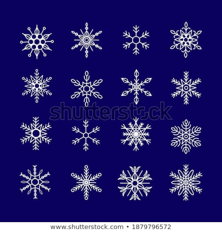 Collection of 16 blue snowflakes on white background Stock photo © liliwhite