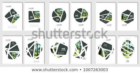 ingesteld · website · sjabloon · ontwerpen · moderne - stockfoto © davidarts