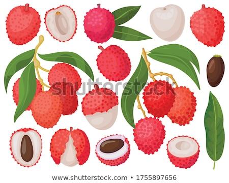 Sweet плодов белый завода Сток-фото © Masha