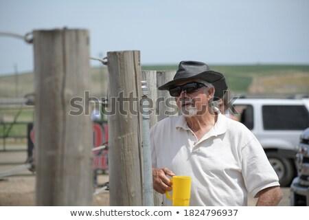 ciddi · gündelik · adam · gözlük · bakıyor - stok fotoğraf © feedough
