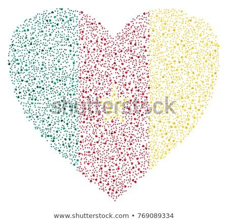 Kamerun kraju banderą Pokaż tekst Zdjęcia stock © tony4urban