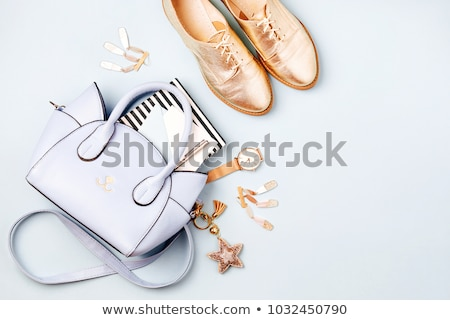 Woman accessory - stylish bag on white Stock photo © shutswis