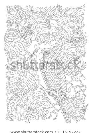Weinig bugs karakter illustratie borduurwerk kinderen Stockfoto © adamfaheydesigns