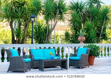 Vista balcón apartamento océano palmeras Foto stock © meinzahn