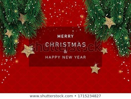 Wesoły christmas sezonowy zaproszenia nowy rok ulotki Zdjęcia stock © DavidArts