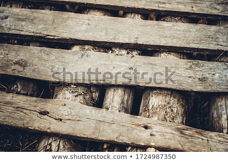 weathered wooden fence panels close up detail stock photo © latent