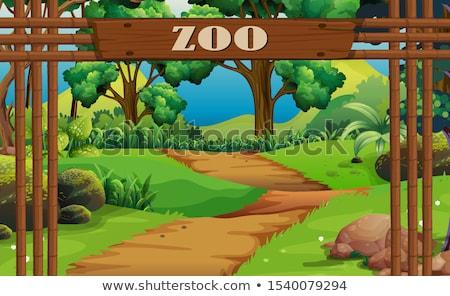állatkert · felirat · illusztráció · kutya · természet · háttér - stock fotó © bluering