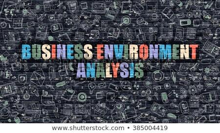 Multicolor Business Environment Analysis on Dark Brickwall.  Stock photo © tashatuvango