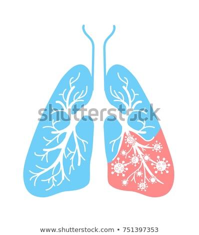 Ikon akciğer hastalık zatürree astım kanser Stok fotoğraf © Olena