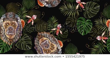 動物 ジャングル 実例 グループ サファリ動物 デザイン ストックフォト © lenm