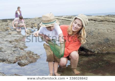 Junge Krabbe net Natur Spaß Tier Stock foto © IS2