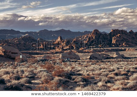 Desert and rocky mountains Stock photo © tracer