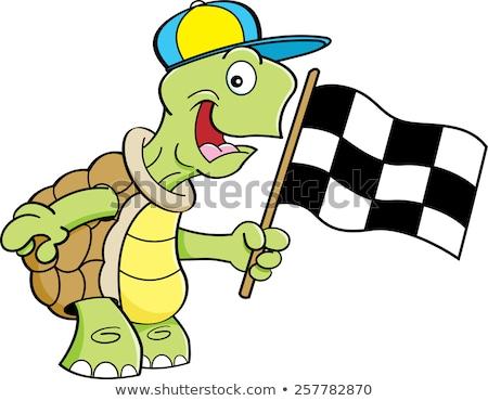 desenho · animado · tartaruga · bandeira · ilustração - foto stock © bennerdesign