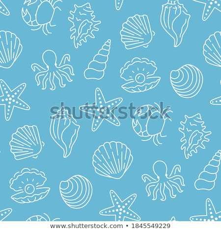 clam and octopus crab and scallop vector icons stock photo © robuart