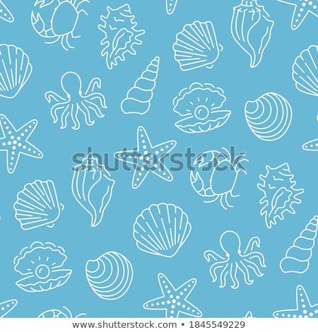 deniz · yaratıklar · hayvanlar · vektör · simgeler · yalıtılmış - stok fotoğraf © robuart