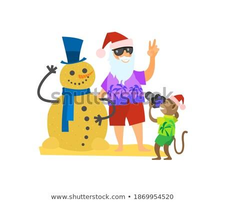 bonhomme · de · neige · Noël · illustration · vecteur - photo stock © robuart