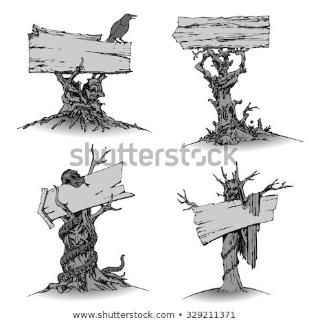 Legno cartellone banner illustrazione texture legno Foto d'archivio © colematt