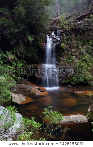 Bushland oasis with pretty waterfall tumbling into rock pool Stock photo © lovleah