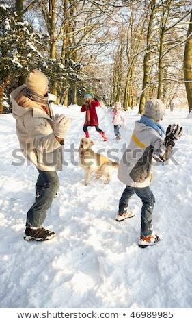 familie · sneeuwbal · strijd · meisje · man · winter - stockfoto © monkey_business