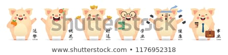 cute pig   flat design style set of cartoon characters stock photo © decorwithme