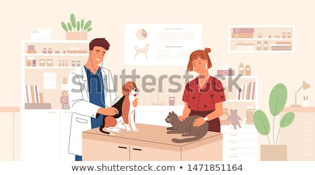 Perro doctor veterinario clínica ilustración veterinario Foto stock © lenm