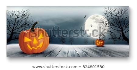 Miedo fantasma riendo cara halloween banner Foto stock © SArts