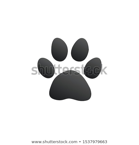 лапа печать животного след икона складе Сток-фото © kyryloff