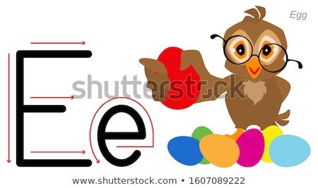 Inglês alfabeto linguagem coruja pássaro ovo Foto stock © orensila